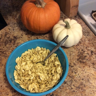 pumpkin-seeds3