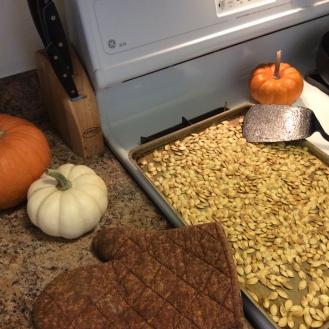 pumpkin-sseds5
